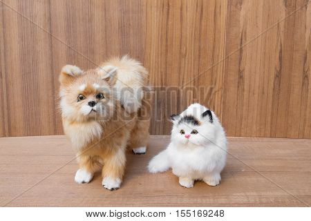 doll white cat and dog beautiful on wooden floor background