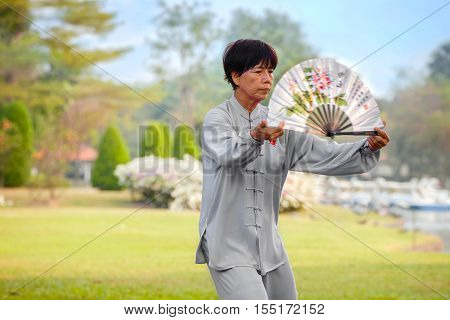 Bangkok, Thailand - February 20, 2016: Unidentified Group Of People Practice Tai Chi Chuan In A Park