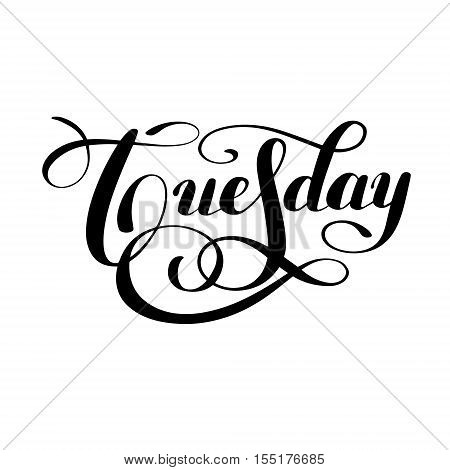 Tuesday day of the week handwritten black ink calligraphy lettering inscription isolated on white background, vector illustration