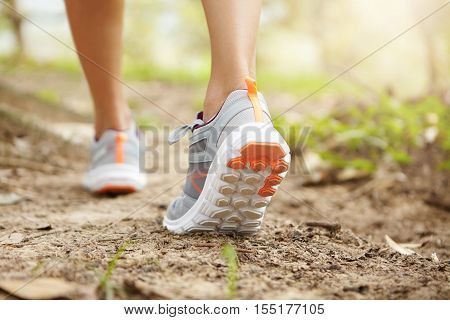 Rear Cropped Shot Of Athletic Legs Of Woman Jogger Wearing Pink Running Shoes During Jogging Exercis