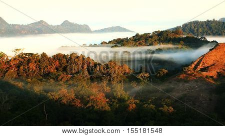 Morning Mist At Tak, Thailann1D