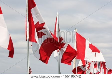 Long row of many Canadian flags on top of fence as a dedication and remembrance of those Canadians who were killed or went missing in numerous worldwide conflicts.