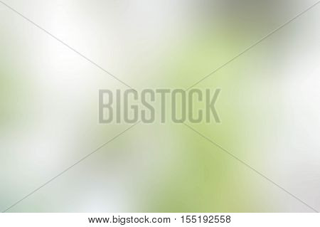 texture blur color greenlight style background sunlight abstract