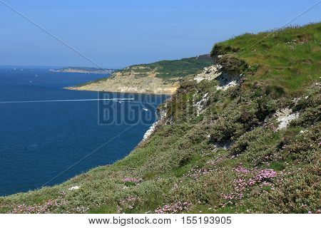 A view of the chalk cliffs overlooking Alum Bay on the Isle of Wight