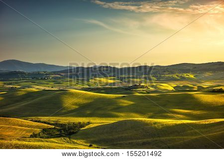 Tuscany spring rolling hills and green fields on sunset. Rural landscape. Volterra Italy Europe