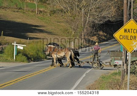 Back view of Amish boy crossing a road with farm horses and cart