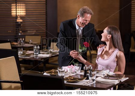 First date. Aged smiling pleasant man looking at the woman and giving the rose to her while standing near the table in the restaurant