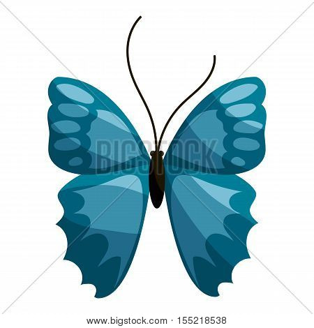 Blue butterfly icon. Cartoon illustration of blue butterfly vector icon for web