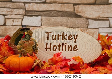 Thanksgiving cooking message Some fall leaves turkey on a pumpkin and wood plaque on weathered brick with text Turkey Hotline