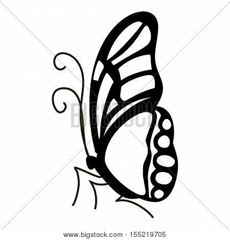 Contour butterfly icon. Simple illustration of contour butterfly vector icon for web