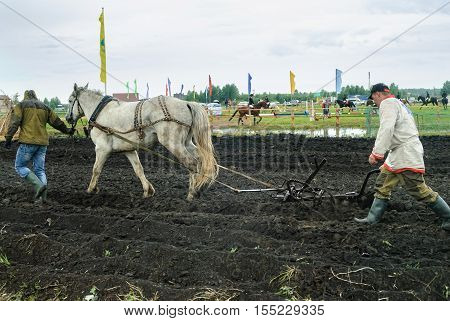 Tyumen, Russia - June 24, 2016: The 5th open championship of Russia on a plowed land. Draught horse pulles plough through field. Draught horse was traditionally used in ploughing before the large scale mechanisation of farming.