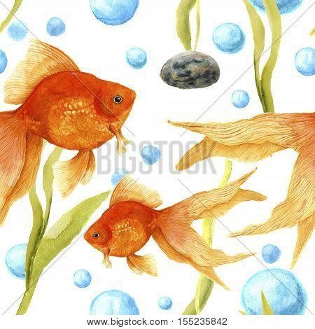Watercolor pattern with aquarium. Goldfish, stone, algae and air bubbles. Artistic hand drawn illustration. For design, textile, print
