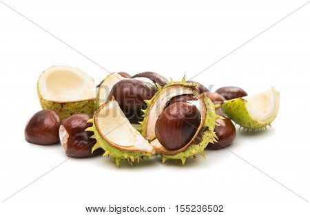 nut, objects chestnuts on a white background