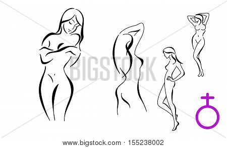 Stylized Female Bodyes Outline Vector Contour Body Silhouette Isolated On White Background Parts Design Element For Beauty Spa Salon