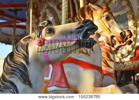 carousel horse merry go round carnival fair amusement ride