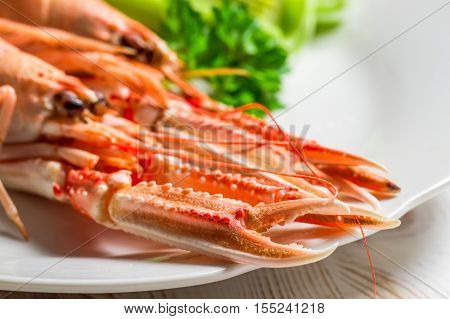 Feshly cooked scampi on a plate on old wooden table