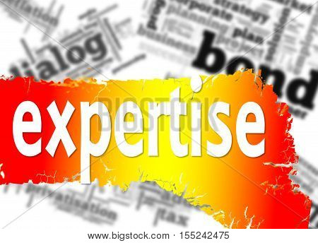 Word Cloud With Expertise Word