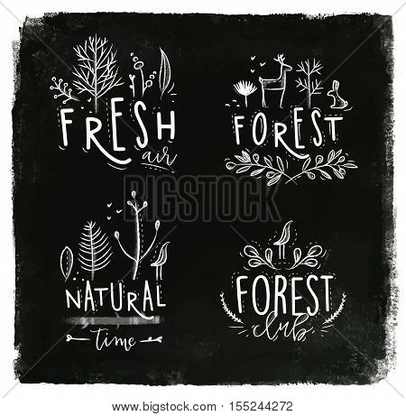 Forest labels lettering forest fresh air forest club natural time drawing with chalk on blackboard background