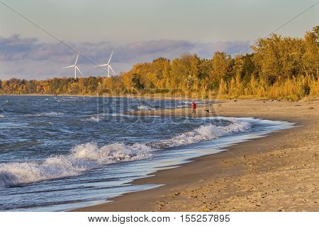 Woman walking her dog on a Lake Huron beach with wind turbines in background - Grand Bend Ontario Canada