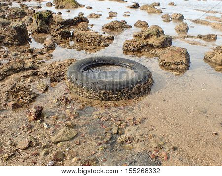 Rubber tire is garbage in the coastal sea