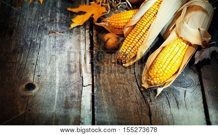 Happy Thanksgiving Day Border design. Autumn Thanksgiving wooden table decorated with corncobs and leaves background, still-life. Beautiful Holiday Autumn festival concept scene Fall, Harvest.