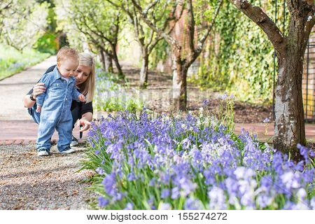 young smiling mother showing her cute cheerful son blooming flowers in the park at spring