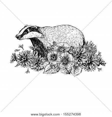 Hand drawn badger with flowers. Vintage style. Print for t-shirt. Tattoo design. Retro sketch isolated. Doodle linear graphic design. Black and white drawing wild animal. Vector illustration.