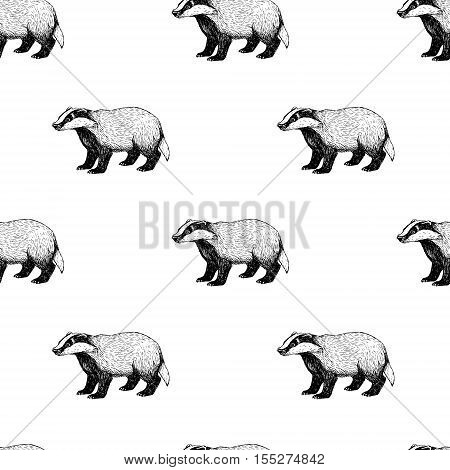 Seamless pattern with badger. Background in vintage style. Retro sketch. Doodle linear graphic design. Black and white drawing wild animal. Vector illustration.