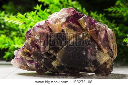 fluorite stone mineral specimen the natural beauty