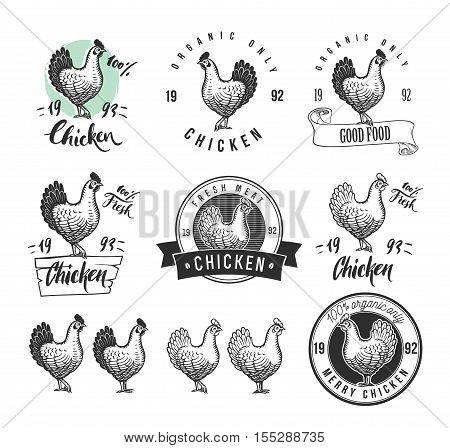 Chicken product logotypes set. Hen meat and eggs vintage produce elements. Badges and design elements for manufacturing. Vector illustration