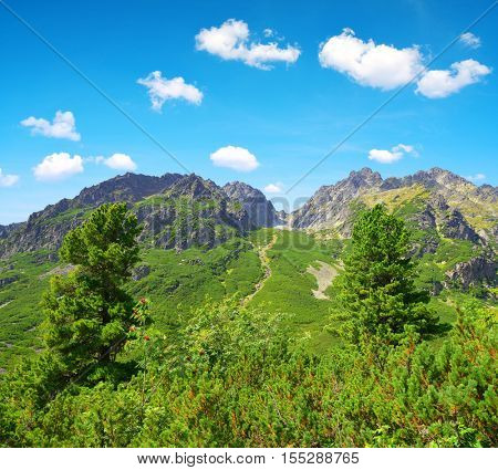 Summer mountain landscape. Mengusovska Valley in Vysoke Tatry (High Tatras), Slovakia