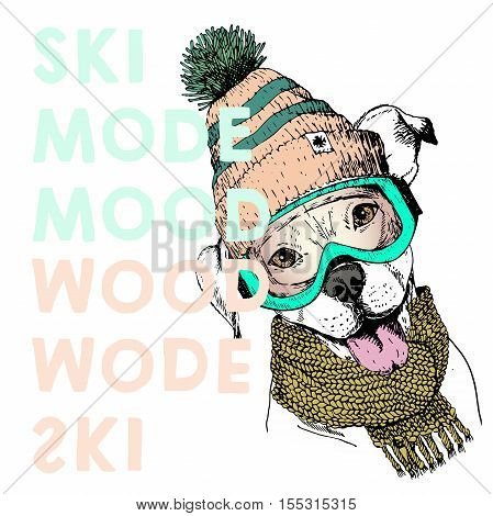 Vector poster with close up portrait of pit bull dog.Ski mode mood. Puppy wearing beanie scarf and snow goggles. Hand drawn illustration. Use for sport shop resort ski-rent promotion print design.