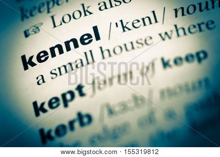 Close Up Of Old English Dictionary Page With Word Kennel