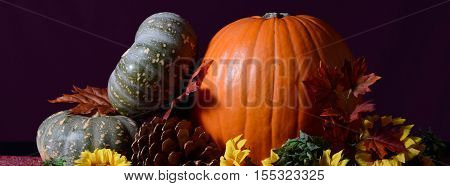 Autumn Fall Pumpkins Social Media Banner