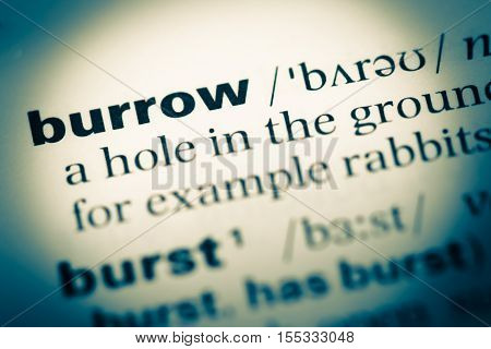 Close Up Of Old English Dictionary Page With Word Burrow