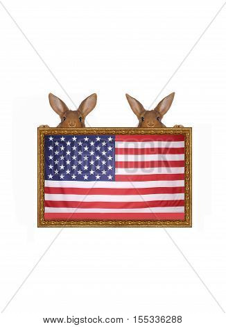 two rabbits against the American flag on a white background