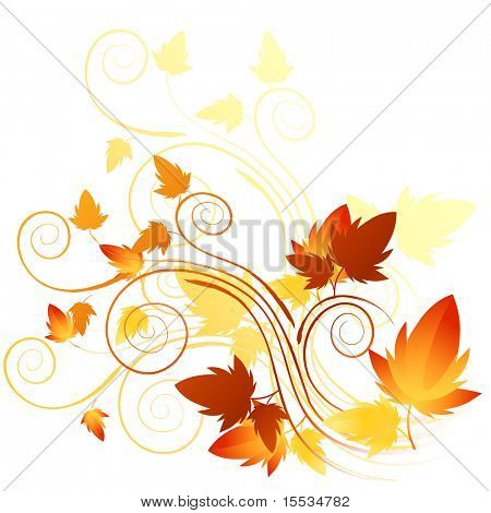 Soft floral elements with autumn in mind. Vector illustration