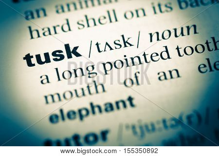 Close Up Of Old English Dictionary Page With Word Tusk