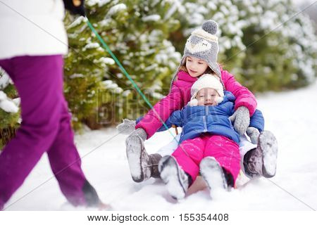 Two Cute Little Sisters Enjoying Sleight Ride With Their Mother