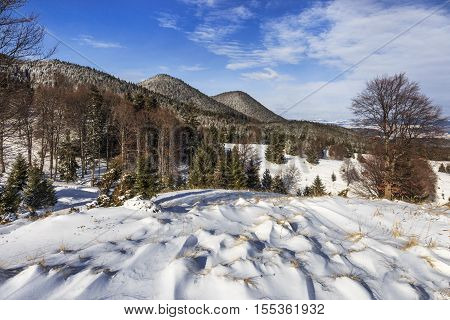 landscape with hills, forests and meadows covered with snow in winter
