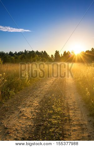 summer rural landscape with sunrise fog and the road