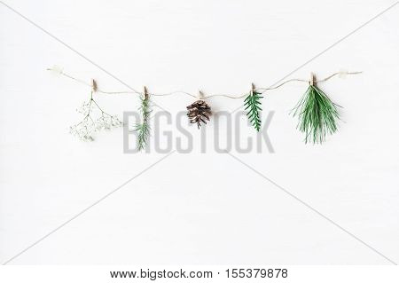 Conifers branches gypsophila flowers pine cone. Winter concept. Flat lay top view