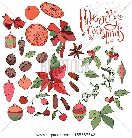 Set with isolated Christmas objects - flowers, spice,fruits and decoration. Vector, hand drawn.  Merry Christmas calligraphy phrase. Red,green, black and brawn.