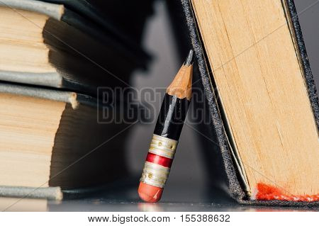 Old Books And Small Perfect Pencil