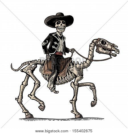 Rider in the Mexican man national costumes galloping on skeleton horse. Day of the Dead Dia de los Muertos. Vector hand drawn color vintage engraving for poster label. Isolated on white background