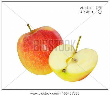 Realistic apples. Natural red and yellow fruit isolated on white background. Collection of dietary products. Apple in the cut. Elements for design. Vector illustration EPS 10.