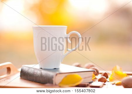 White mug of tee staying on book over nature background.