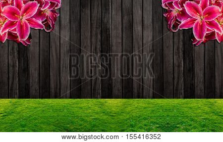 wood background wooden fence and the garden with Lilly flower