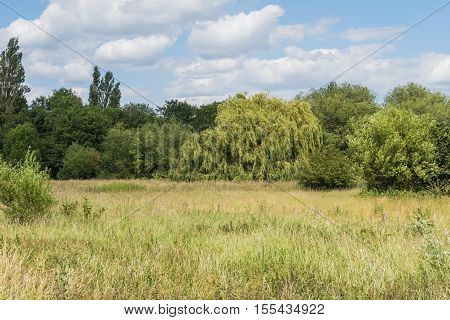 A landscape view of the beautiful Countryside in Bedford