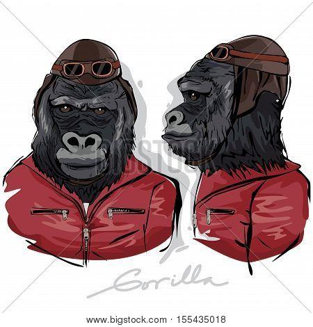 A vector illustration of Gorilla Dressed as Human Pilot
